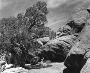 Simon Canyon, New Mexico 2014